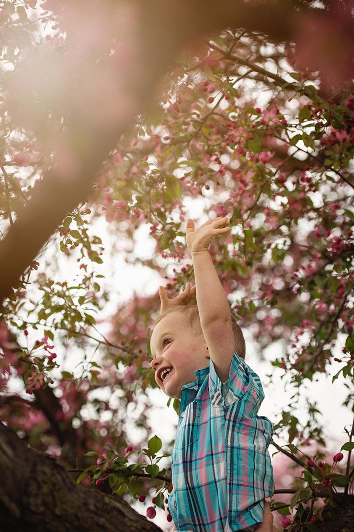 Child spring blossom portrait
