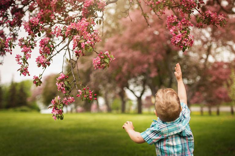 child portrait with blossoms